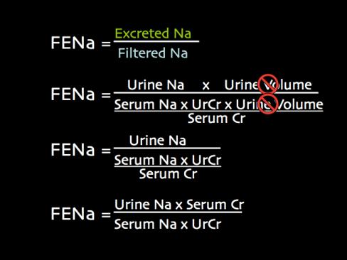 FENa math